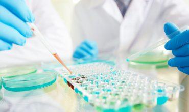 Remédio em fase experimental detém progressão do parkinson em ratos